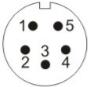 gr (4)